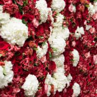Red and white flower wall at wedding