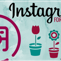 FSN-Instagram For Florists